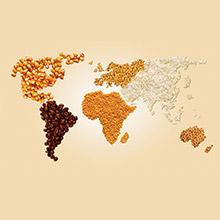 Tafe Global Footprint